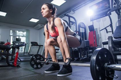 Gesetze des Muskelaufbaus