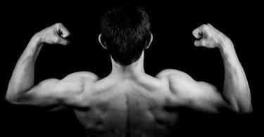breite Schultern ohne Hanteln aufbauen