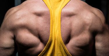Band Pull Aparts für gesunde Schultern