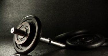 Hantel & Wrist Roller selber bauen