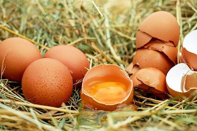 Cholesterin und Ernährung: Aufgaben und Einfluss auf Testosteron