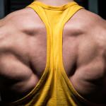 Rückenprogramm