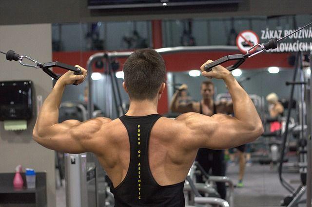 Trainingsmethoden im Muskelaufbau: Theorie & Praxis ILB für Fortgeschrittene